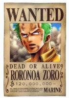 Zoro-l'épéiste