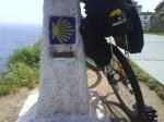 Bicicletas 208-63