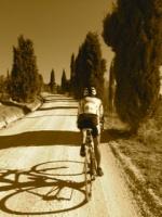Buscando compañia para bicigrinear o para compartir transportes 8956-24