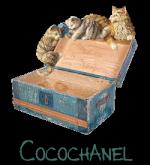 cocochanel