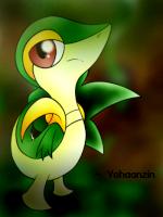 yohanzin