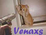 Venaxs