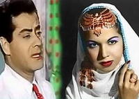 سوزان عبدالمجيد الشامى