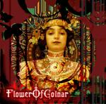 FlowerOfGolnar