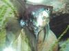 Blue - Smokey Paraiba