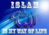 Islam is the true way of life