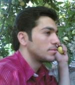 حسين الطويل