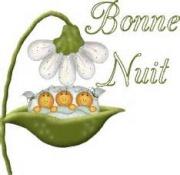 """""""Bonjour / Bonsoir"""" !!! - Page 38 4098868977"""