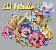 جماهيـــــــــر الفنان وليد الشامي 3299381051