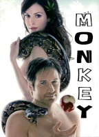 Monkey D. Sol