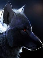 blackwolf45