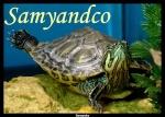 Samyandco