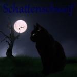 Tag und Nachtkatzen 31-96