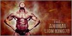 LION KING78