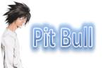 PiT -BuLL