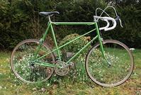 L'ours à vélo