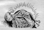 Zorba the Hutt