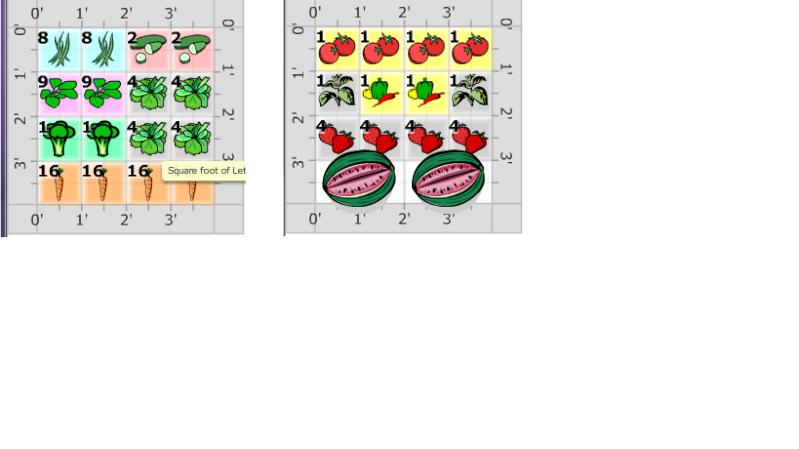 First time gardener needs your input! Spring10_800x600