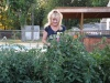 My tomato plants are over 5' tall and 2-3 feet wide.