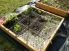 Showcase of Gardens Dscn1411