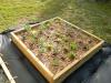 Showcase of Gardens Dscn1412