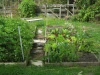 Showcase of Gardens Veges_10