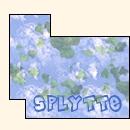 Splytte