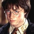 Harry Peloteur