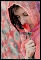 دموع الورد