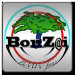 bonzai06100