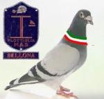 Marcanzi