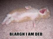Blargh, I am ded.