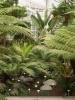 Jardin Botanique National de Belgique Evo10110