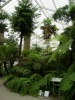 Jardin Botanique National de Belgique Evo12110