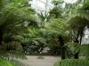 Jardin Botanique National de Belgique Evo210