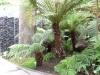 Jardin Botanique National de Belgique Evo310