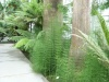 Jardin Botanique National de Belgique Evo510