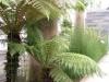 Jardin Botanique National de Belgique Evo810