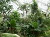 Jardin Botanique National de Belgique Mab210