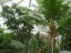 Jardin Botanique National de Belgique Mab310