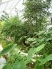 Jardin Botanique National de Belgique Mab610