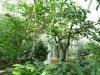 Jardin Botanique National de Belgique Mab710