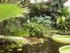 Jardin Botanique National de Belgique Vic1010