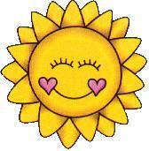 Soleil de Vie