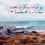 maram almasri