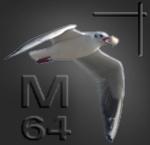 Metros-64