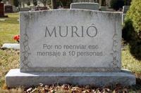 Murciano
