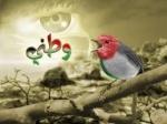 ***بنت الشام***