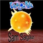 Sam Sagaz
