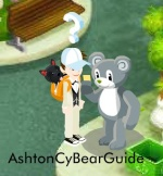 AshtonCyBearGuide